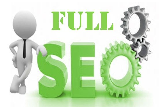 do a full SEO campaign for your website