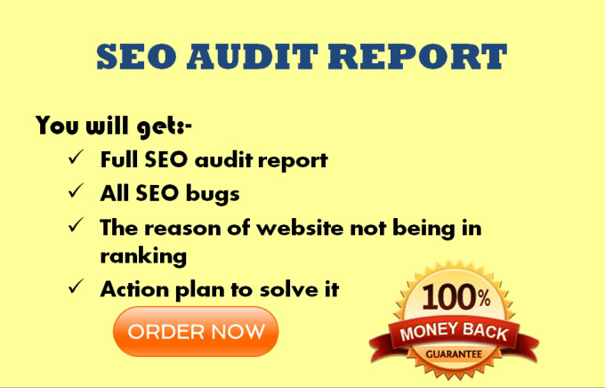 do professional seo audit and suggestion to improve it