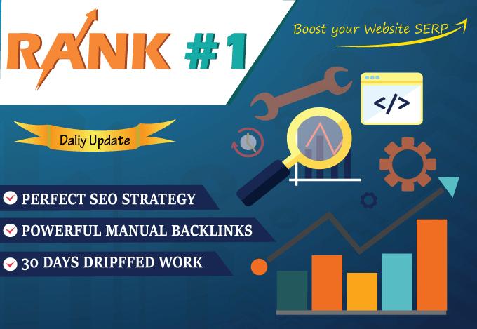 rank your website 30 days seo pbn backlinks manually