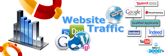 1 million High Quality worldwide traffic & web traffic to your website
