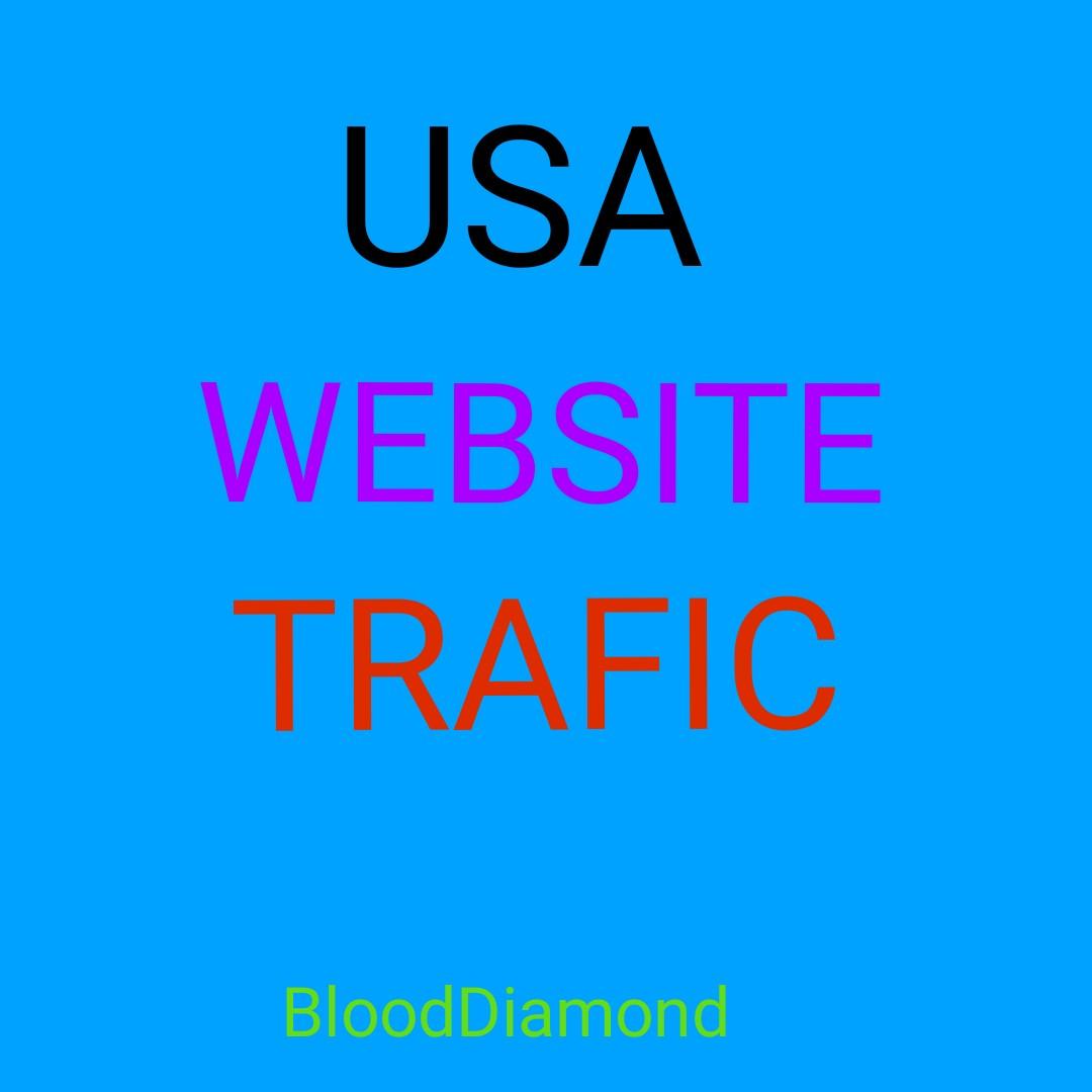 40k Worldwide Website Traffic For network Marketing &...