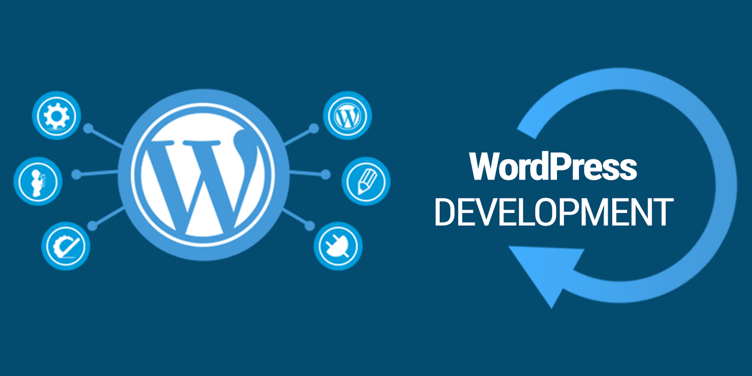 Develop a Professional Wordpress Webiste for you