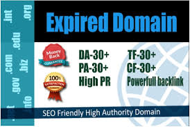 10 expired domain with high matrix