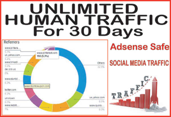 Unlimited human traffic seo for 35 days