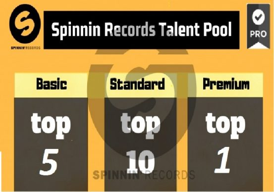 Provide you Spinnin Records Track Rank Talent Pool To...