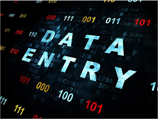 Data Entry Work 500 Entry Service