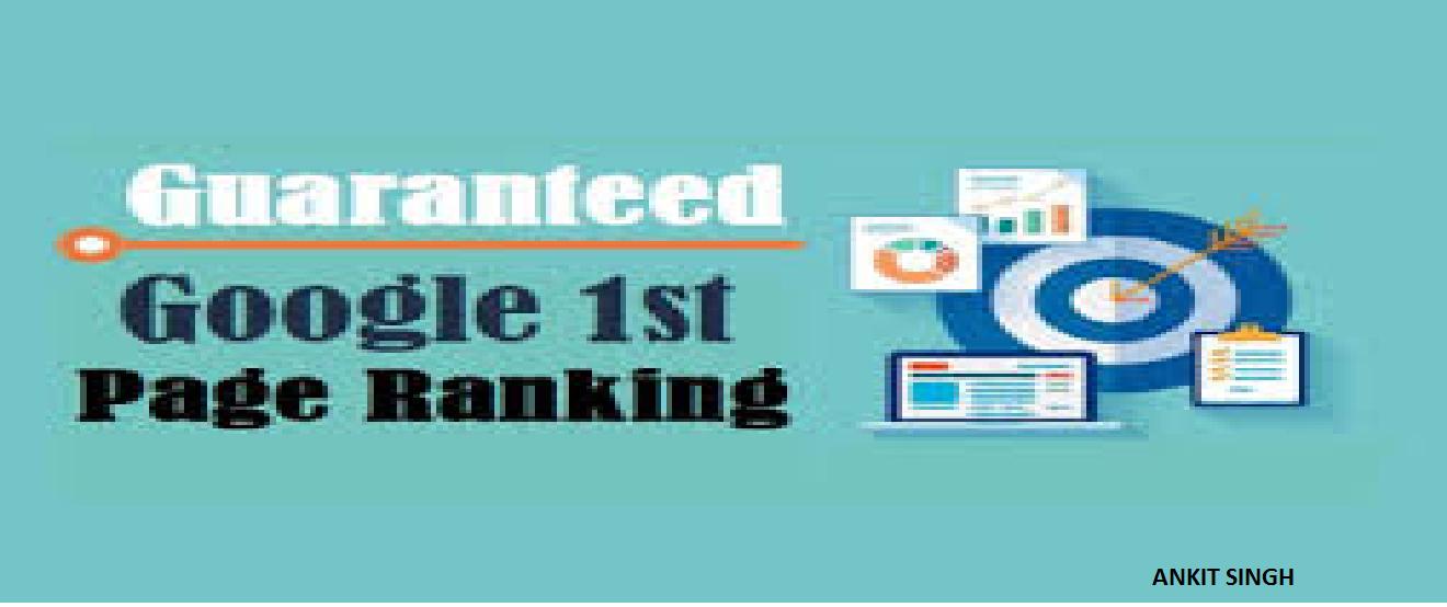 SEO Services - 100 Keyword Rank Guarantee On Google