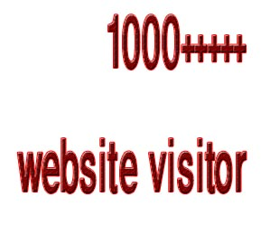 will send 1000 targeted website traffic real visitors