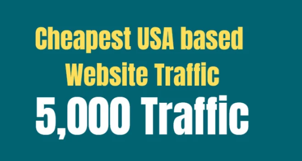 provide you cheapest USA based website traffic
