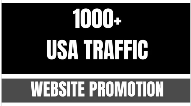 send 1000 organic traffic to your website