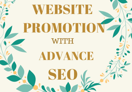 provide advance SEO to your website promotion