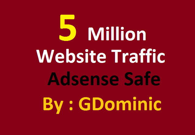 SKYROCKET 5 Million Website Worldwide Traffic For net...
