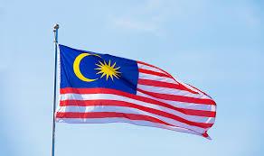 95,000 Malaysia WEBSITE VISITORS