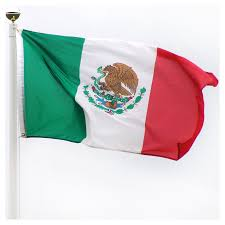 100,000 Mexico WEBSITE VISITORS