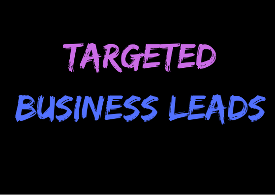 provide 100 targeted business leads as per your requirements