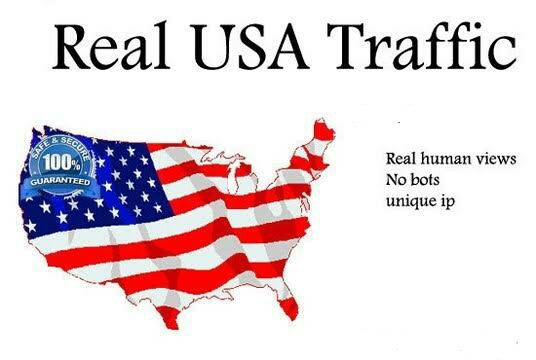 5000+ High Quality USA Human Traffic/Visitors for your website