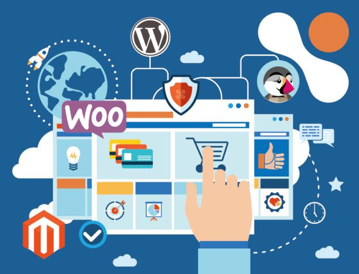 I'll develop a wordpress website