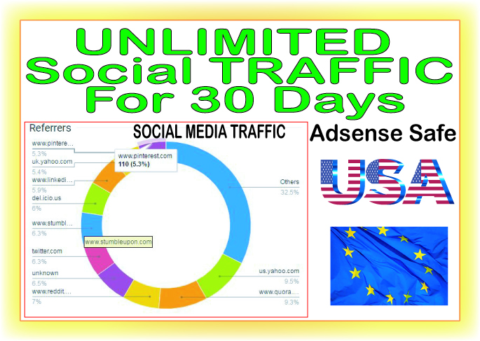 Do 30 days of Unlimited Human Traffic from social & organic Web Visitors from main search engines