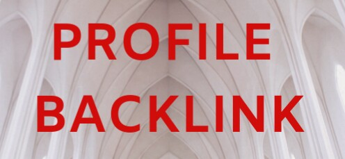 Give You 20+ High DA PA Profile Backlink with SEO Ran...