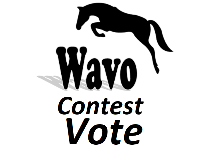 Get offer 40 wavo votes for your WAVO. ME Contest