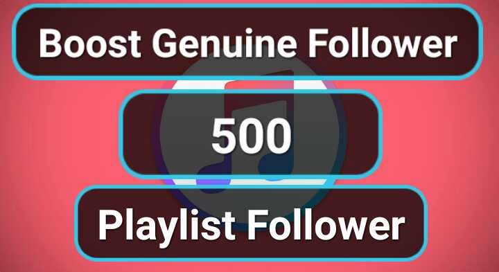 Get Manually 500 Playlist Artist Profile Followers