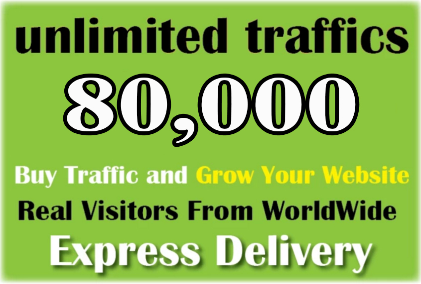 Super Fast 80,000 Worldwide Real Human Website Traffic