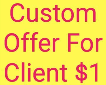 Custom Offer For Mini Client With Huge Discount