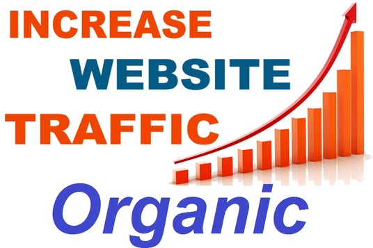 Real 20000 Human Wedsite Traffic