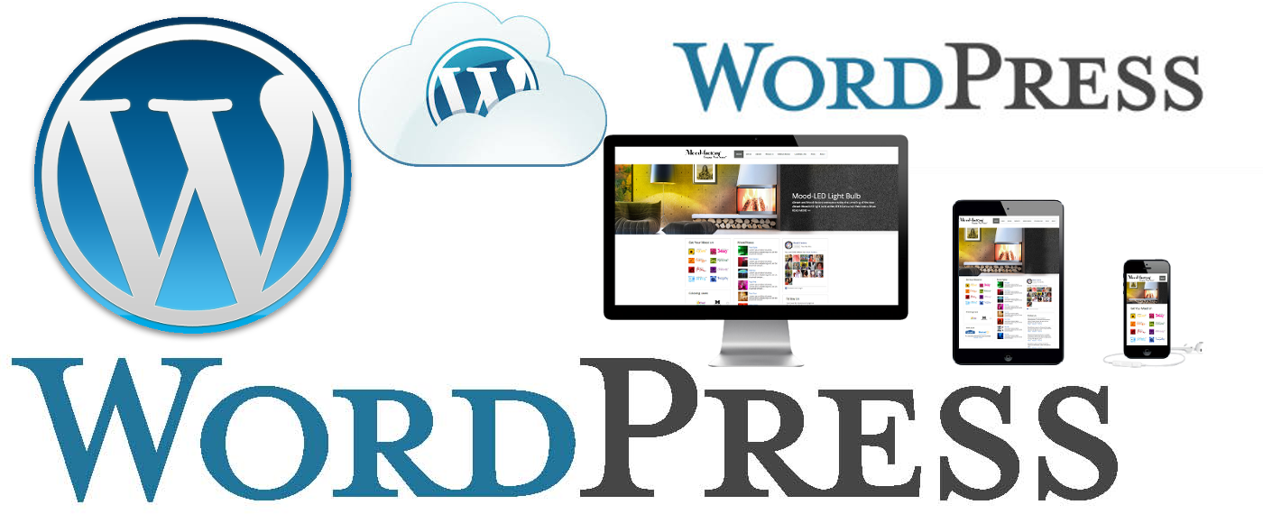 Design A Professsional and Awesome Wordpress Website
