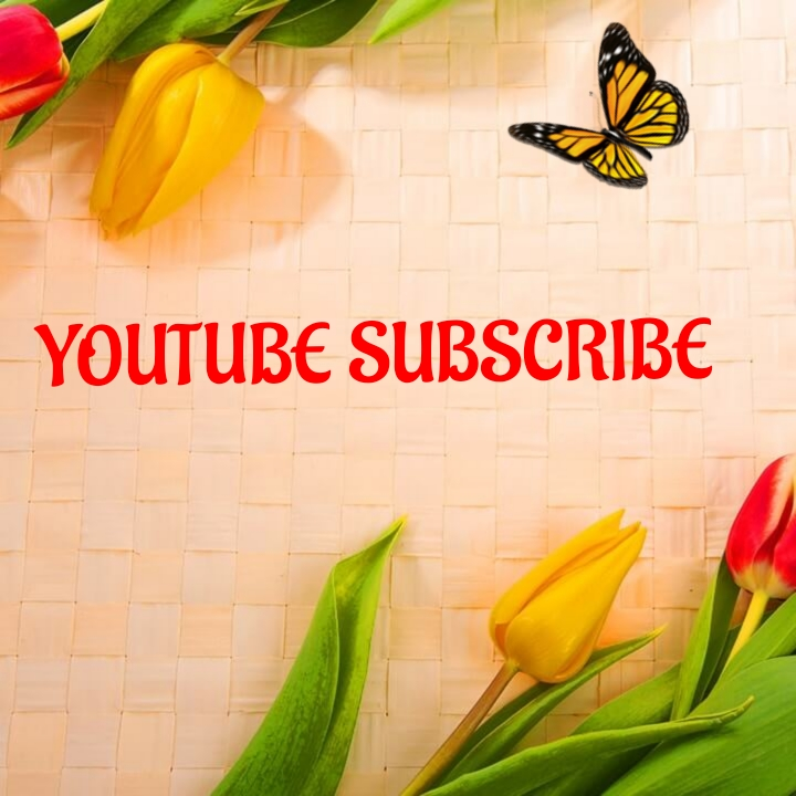 Give you 100+youtube  video   promotion instant delivery