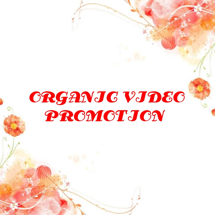 Give you Organic video banner promotion instant deliv...