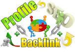 built 150 Profile DOFOLLOW High Quality DA/PA TF/CF Google Dominating BACKLINKS