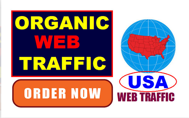 drive 5000 targeted USA web traffic to your website