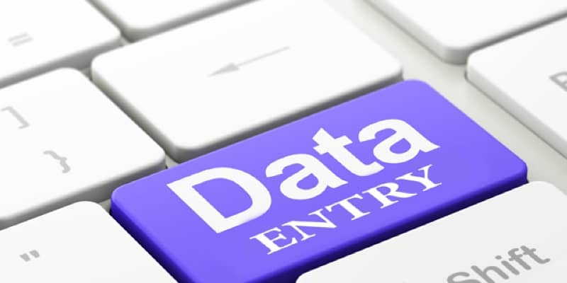 Best Data Entry for you