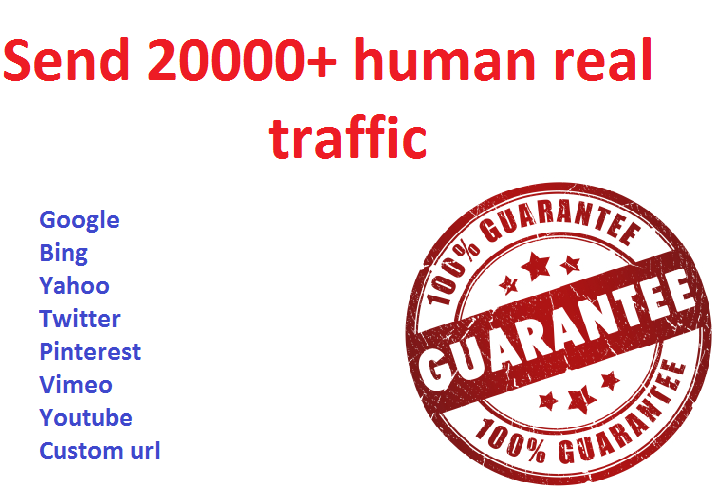 Provide more than 20,000 Real human world wide traffic