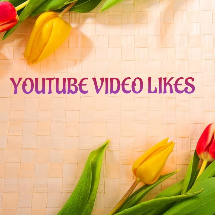 Get you 65+ youtube  analysis and research