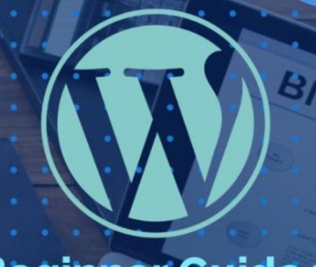 wordpress customisation