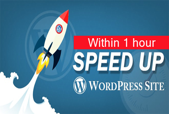 Speed Up your WordPress Site now within 1 hour