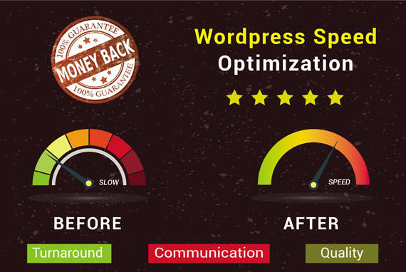 Do Wordpress Speed Optimization for seo Best Performance