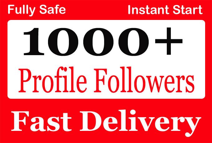 Add-1000-High-Quality-Social-Profile-Followers