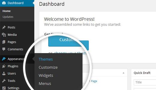I can set any wordpress theme wordpress theme