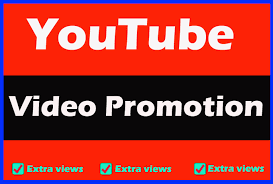 1000 High Quality YouTube Videos Promotion
