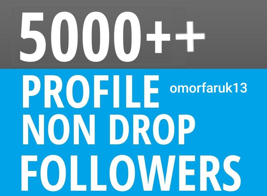 HQ 1000 profile followers Non drop follower