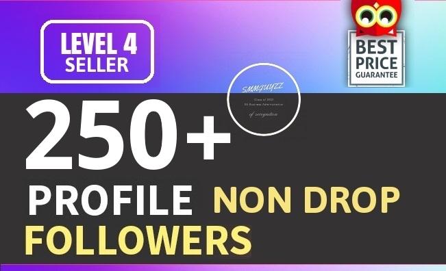 Add 250+ High Quality Fast Profile Followers NON DROP