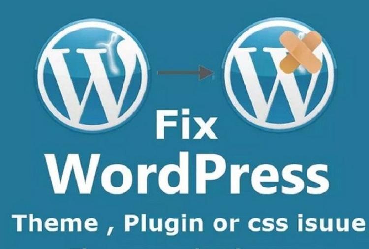 Updates/Fixes/Customization for WordPress Website