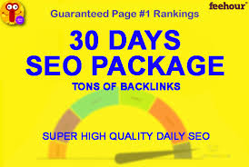 30 days SEO backlinks package for your website