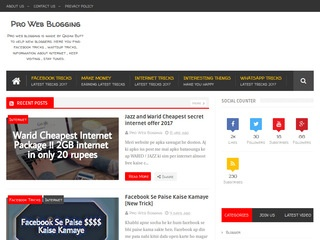 Pro Web Blogging