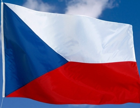 translate a document from English to Czech