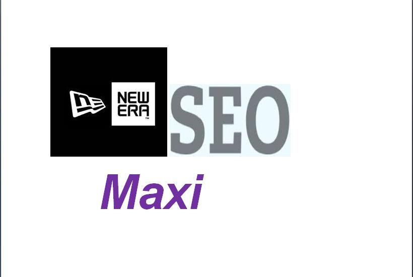 provide a new era SEO maxi the most effective Anti Panda service ever