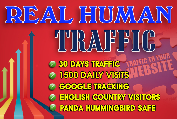 I will send 1500 daily website traffic for one month for $15